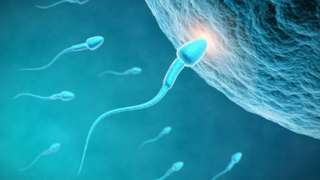 UK's national sperm bank stops recruiting donors