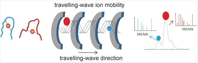 Researchers characterize 'gold fingers' using ion mobility mass spectrometry