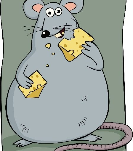 Low-calorie diet prevents asthma symptoms in mice, study finds
